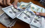 بازار ارز آماده ریزش قیمتها میشود
