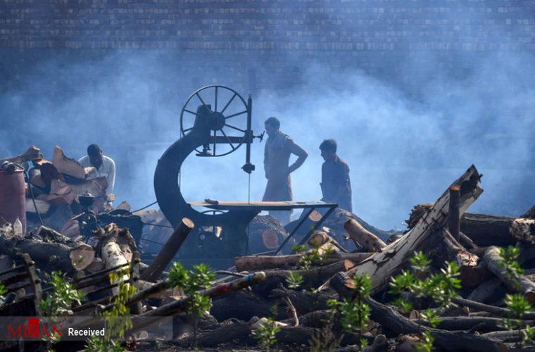 تصاویر: زندگی در انبوهی از زباله