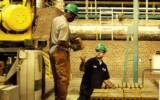 قیمت گذاری گاز برای تولیدکننده ها خرد باید اصلاح شود